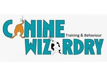 Canine Wizardry