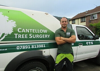 Cantellow Tree Surgery