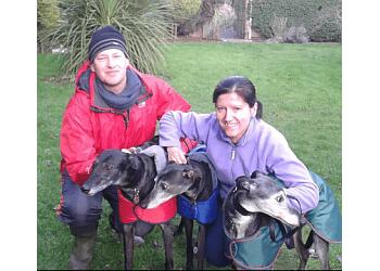Care & Walk Pet Services