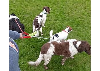 Carisse The Dog Walker