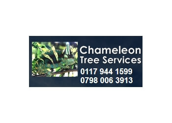 Chameleon Tree Services
