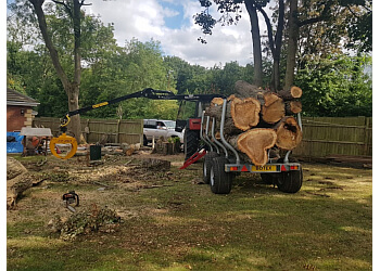 Chapel Farm Tree Surgeons