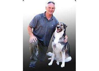 Chaz Worrall Dog Training & Behaviour Centre