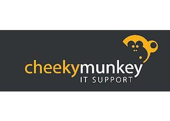Cheeky Munkey