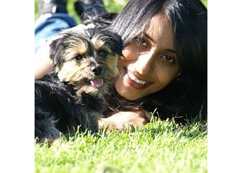 Cheshire Dog School