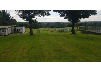 Clarks Hill Kennels & Cattery