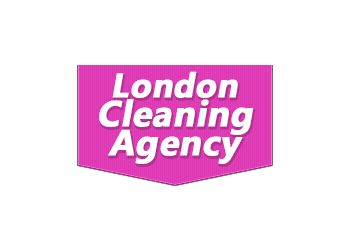 Cleaning Agency Ltd.