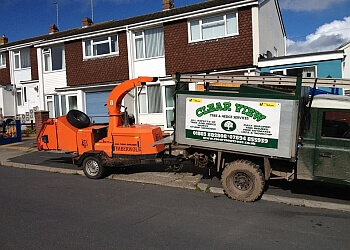 Clear View Tree & Hedge Services