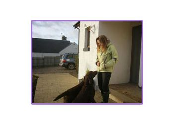 Clydesdale Pet Services