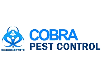 Pest low cost affordable pest control