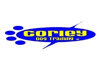 Corley Dog Training Ltd.
