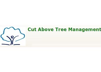 Cut Above Tree Management Ltd.
