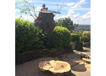 DB Tree Care Ltd