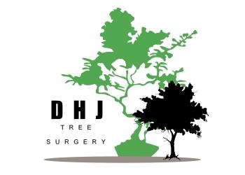 DHJ Tree Surgery
