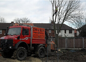 DW Tree Services Ltd.
