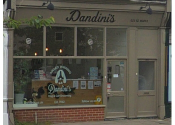 Dandinis Dog Grooming Ltd.