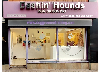 Dashin' Hounds