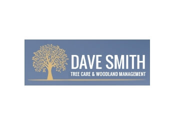 Dave Smith Tree Care and Woodland Management