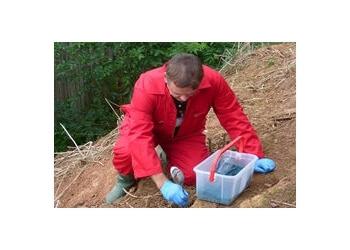 David Price Pest Management