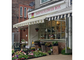 Dawns Flower Box