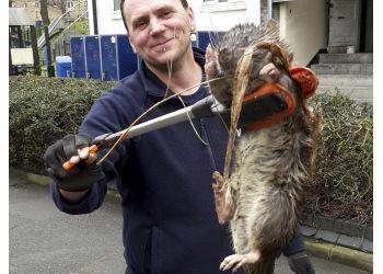 Death To Pest Ltd.