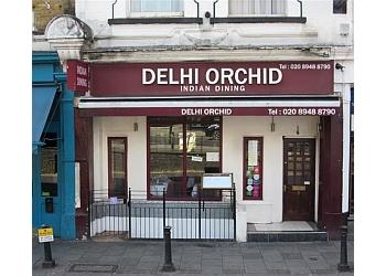 Delhi Orchid