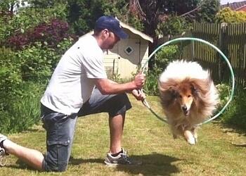 Deorwine Dog Training