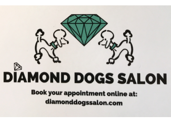 Diamond Dogs Salon