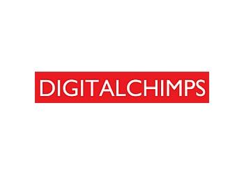 Digital Chimps Ltd.