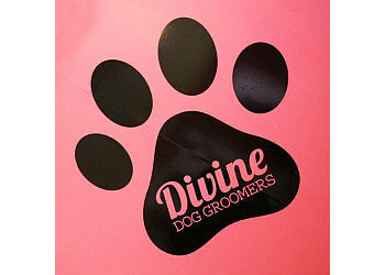 Divine Dog Groomers Ltd.