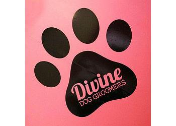 Divine Dog Groomers Ltd.