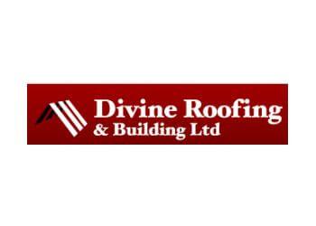 Divine Roofing & Building Ltd.