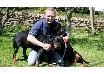 Dog Behaviour Cornwall