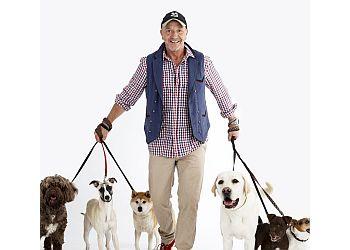 DogDaddies Ltd.