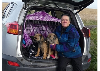 Dog Training Made Simple