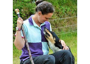 Dog Training in Cornwall
