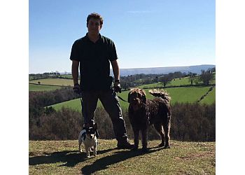 Dog Walker Darran