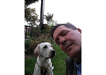 Dog Walking Southend Pet Care