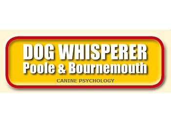 Dog Whisperer Poole & Bournemouth