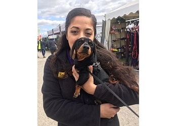 Dogs Trust Dog School