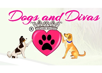 Dogs and Divas