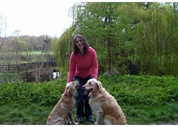 Canine Capers Dog Behaviourist & Trainer