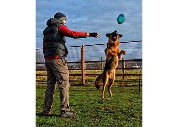 Doncaster Dog Training Centre