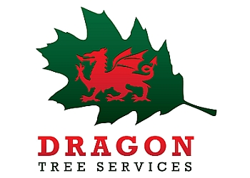 Dragon Tree Services
