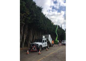 E.D.S Tree Services