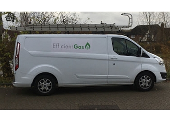 Efficient Gas Services Limited
