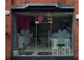 Elegant Paws