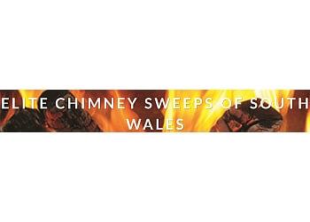 Elite Chimney Sweeps