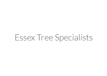 Essex Tree Specialists Website