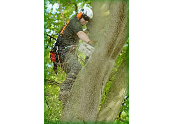 Evergreen Landscape and Tree Services Ltd